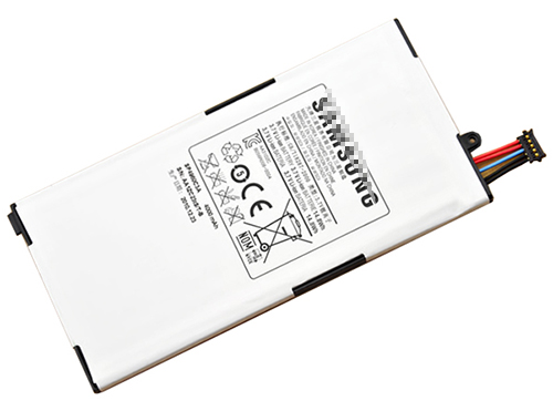 Samsung Galaxy Tab p1000 Battery Photo